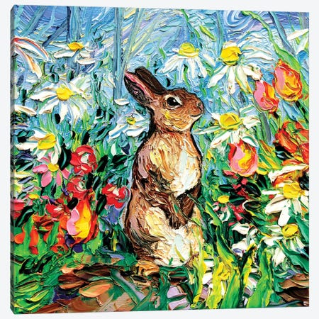 Cottontail Canvas Print #AJT136} by Aja Trier Canvas Art