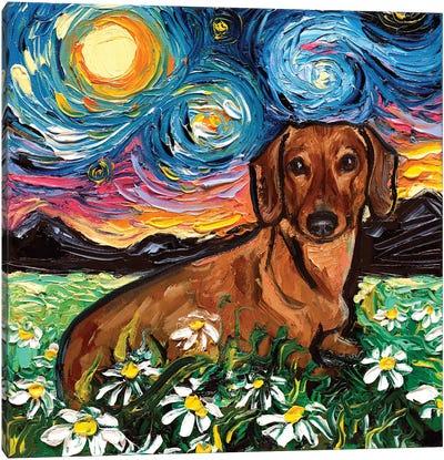 Daisy Dachshund Night Canvas Art Print