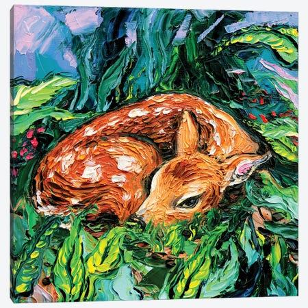 Fawn Canvas Print #AJT141} by Aja Trier Canvas Art
