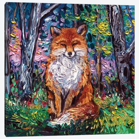 The Red Fox Canvas Print #AJT142} by Aja Trier Canvas Wall Art