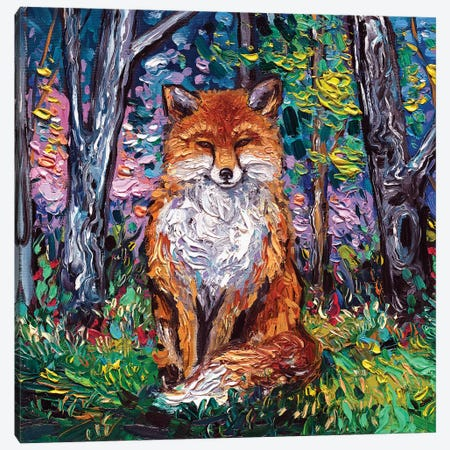 The Red Fox Canvas Print #AJT142} by Aja Trier Canvas Wall Art