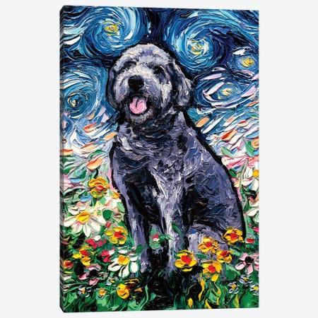 Gray Labradoodle Night Canvas Print #AJT143} by Aja Trier Canvas Art