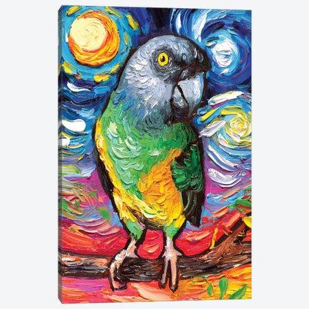 Senegal Night Canvas Print #AJT144} by Aja Trier Canvas Art Print
