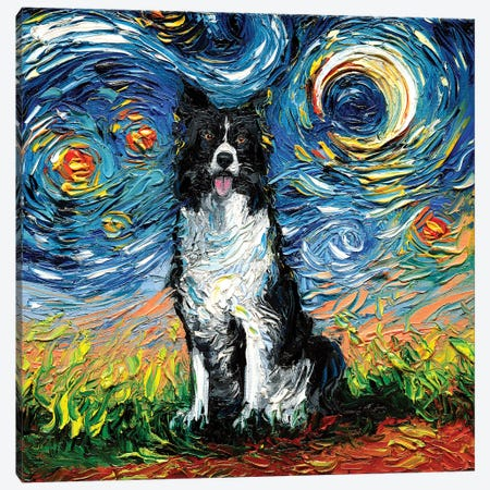 Border Collie Night II Canvas Print #AJT14} by Aja Trier Canvas Print