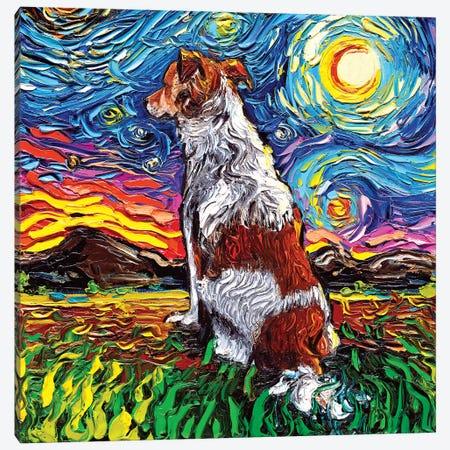 Kooikerhondje Night Canvas Print #AJT162} by Aja Trier Canvas Wall Art