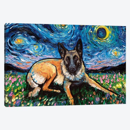 Belgian Malinois Night Canvas Print #AJT163} by Aja Trier Canvas Art