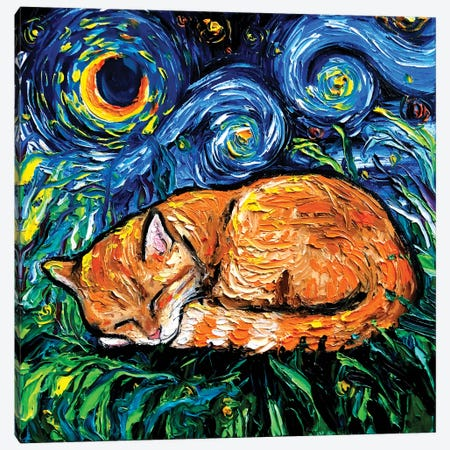 Orange Tabby Night Canvas Print #AJT166} by Aja Trier Canvas Print