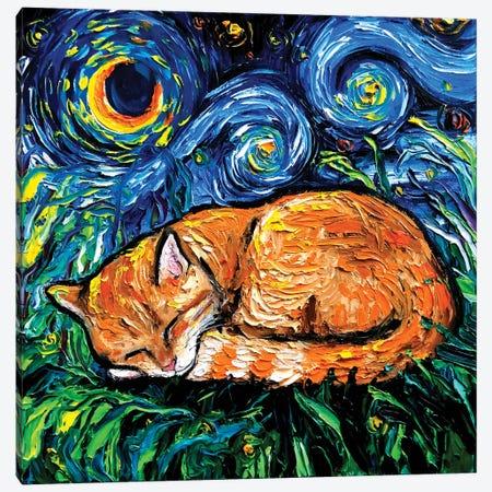 Orange Tabby Night Canvas Print #AJT166} by Aja Trier Canvas Print