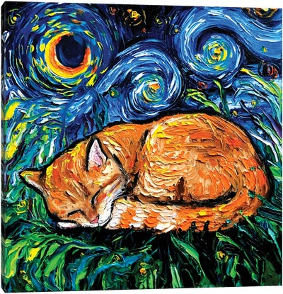 Orange Tabby Night Canvas Art Print