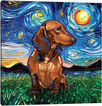 Brown Shorthair Dachshund Night Canvas Art Print