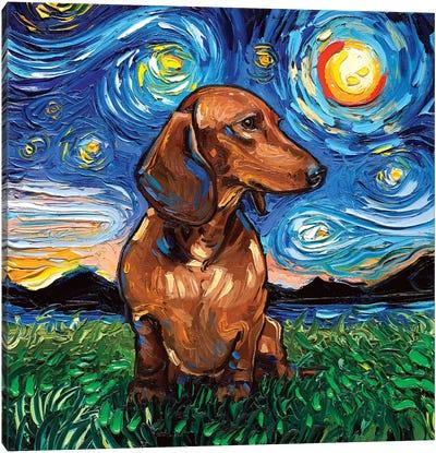 Brown Shorthair Dachshund Night Canvas Art Print