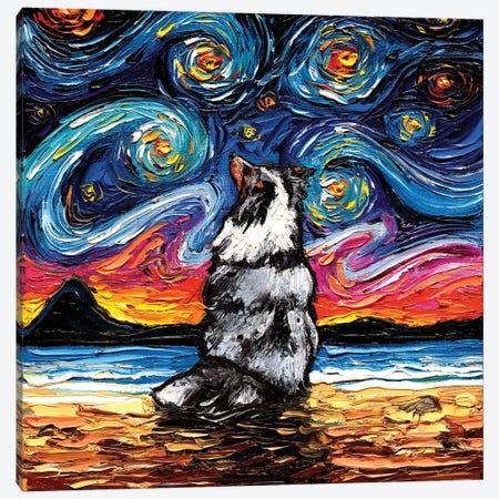Merle Shetland Sheepdog Night Canvas Print #AJT180} by Aja Trier Canvas Artwork