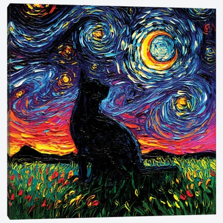 Black Cat Night Canvas Print #AJT183} by Aja Trier Canvas Wall Art