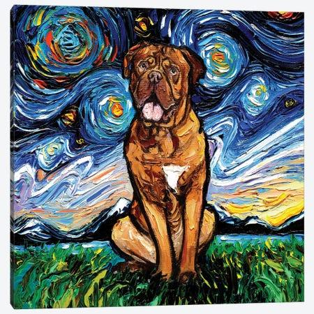 Dogue De Bordeaux Night Canvas Print #AJT185} by Aja Trier Art Print