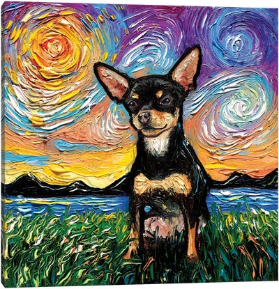 Short Hair Black And Tan Chihuahua Night Canvas Art Print