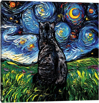 Gray Tabby Night Canvas Art Print
