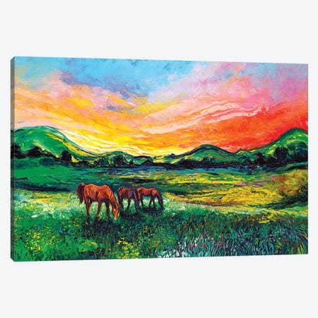 Meadow Sunset Canvas Print #AJT213} by Aja Trier Canvas Artwork