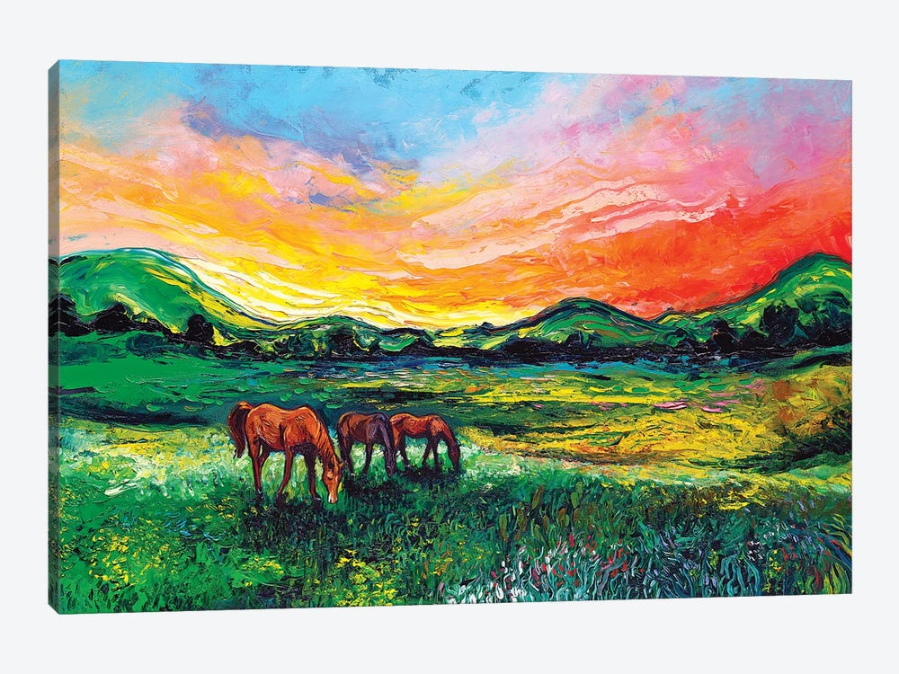 Meadow Sunset by Aja Trier 1-piece Canvas Artwork