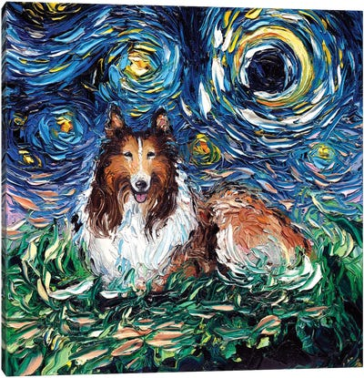 Collie Night Canvas Art Print