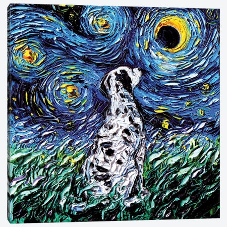 Dalmatian Night Canvas Print #AJT25} by Aja Trier Canvas Art