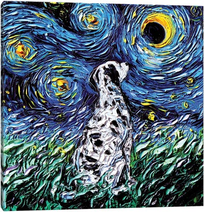 Dalmatian Night Canvas Art Print