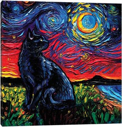 Black Cat Night II Canvas Art Print