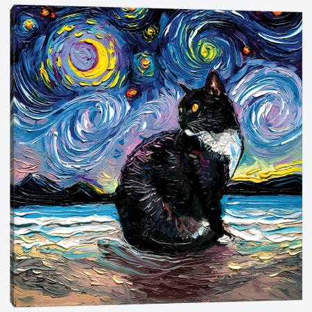Tuxedo Cat Night II Canvas Print #AJT267} by Aja Trier Canvas Artwork
