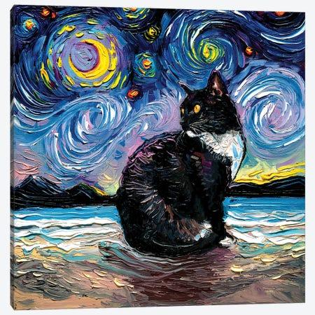 Tuxedo Cat Night II Canvas Print #AJT267} by Aja Trier Canvas Artwork