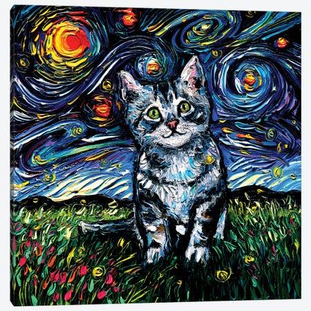 Gray Tabby Kitten Night Canvas Print #AJT270} by Aja Trier Canvas Artwork
