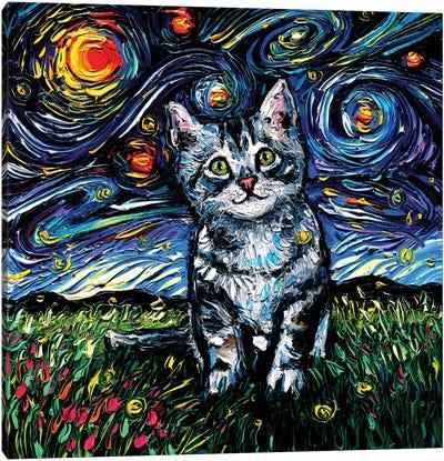 Gray Tabby Kitten Night Canvas Art Print