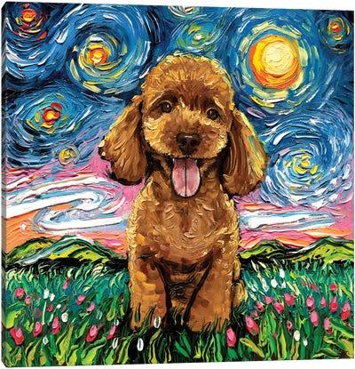 Apricot Poodle Night Canvas Art Print