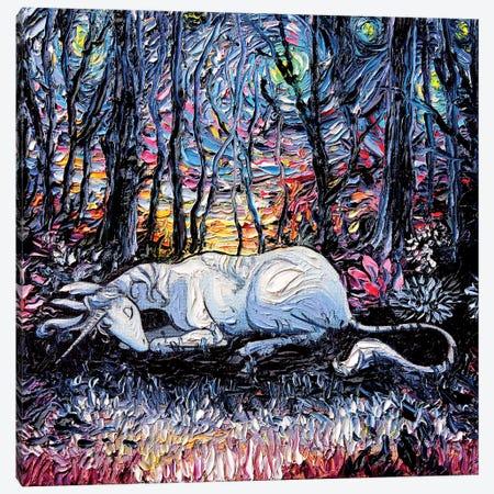 Dreams Canvas Print #AJT27} by Aja Trier Canvas Art