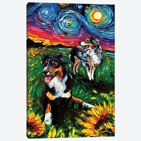 Starry Australian Shepherds Canvas Print #AJT292} by Aja Trier Canvas Art