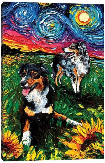 Starry Australian Shepherds Canvas Art Print