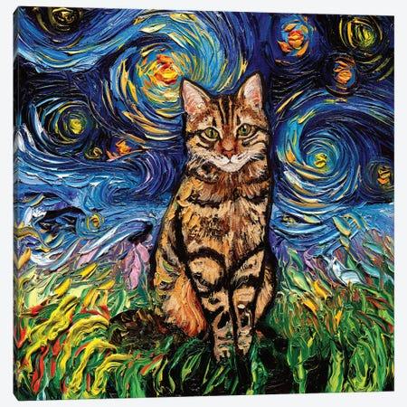 Brown Tabby Night Canvas Print #AJT298} by Aja Trier Canvas Artwork