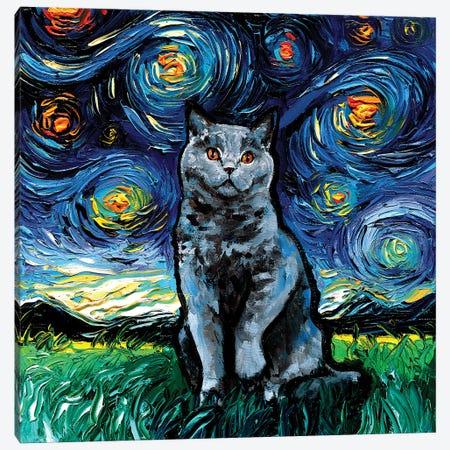 Blue British Shorthair Night Canvas Print #AJT299} by Aja Trier Canvas Artwork
