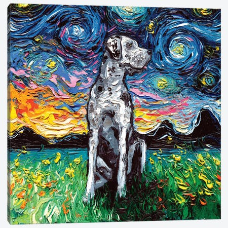 Merle Great Dane Night Canvas Print #AJT43} by Aja Trier Canvas Art Print