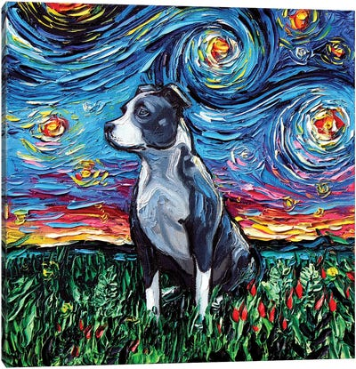 Pitbull Night Canvas Art Print