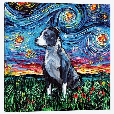 Pitbull Night Canvas Print #AJT48} by Aja Trier Canvas Print