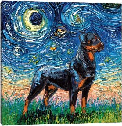 Rottweiler Night I Canvas Art Print