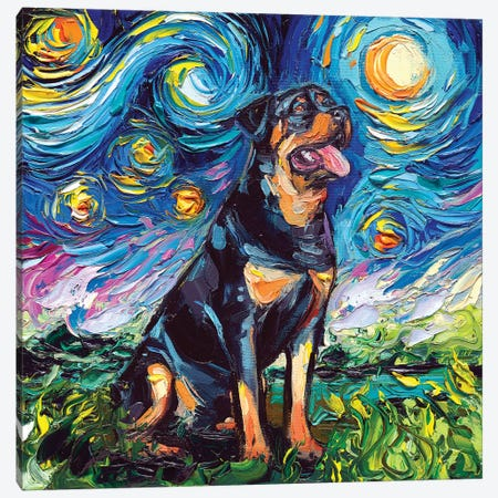 Rottweiler Night II Canvas Print #AJT52} by Aja Trier Canvas Wall Art
