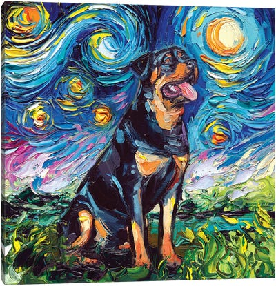 Rottweiler Night II Canvas Art Print
