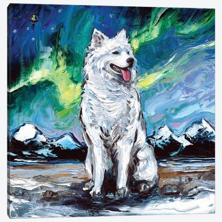 Samoyed Night I Canvas Print #AJT53} by Aja Trier Canvas Wall Art
