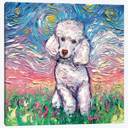 White Poodle Night Canvas Print #AJT85} by Aja Trier Canvas Art