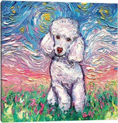 White Poodle Night Canvas Art Print