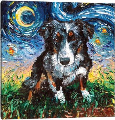 Australian Shepherd Night Canvas Art Print