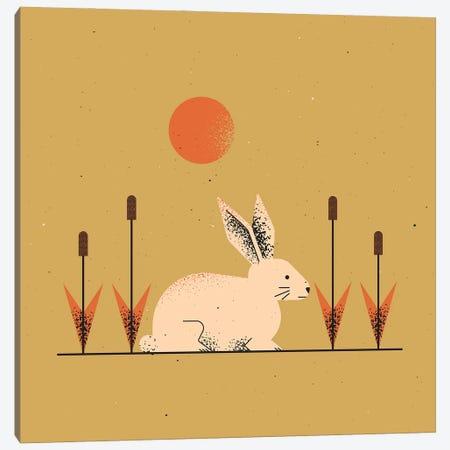 White Rabbit Canvas Print #AKC56} by Amer Karic Canvas Print