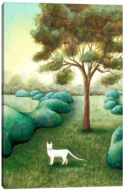 The Pathway Canvas Art Print