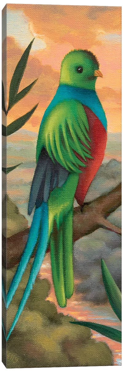 Exotic Bird by Antoinette Kelly Canvas Art Print