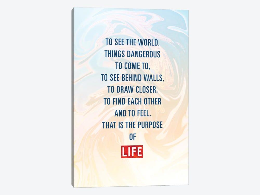 The Purpose Of Life by Nikita Abakumov 1-piece Canvas Print